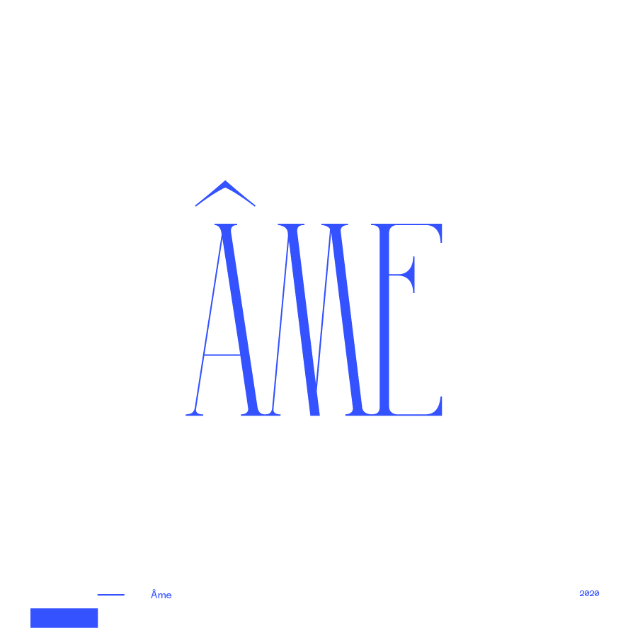 Guapo Design Studio Branding Logotype Collection Ame by Ixou Real Estate